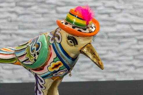 Papuga w kapeluszu z piórkiem 5