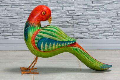 Papuga z czerwonym łebkiem 1