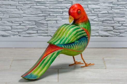 Papuga z czerwonym łebkiem 3